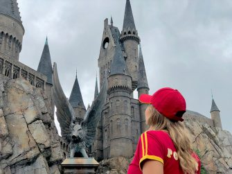 The Wizarding World of Harry Potter no Island of Adventures - Universal Orlando