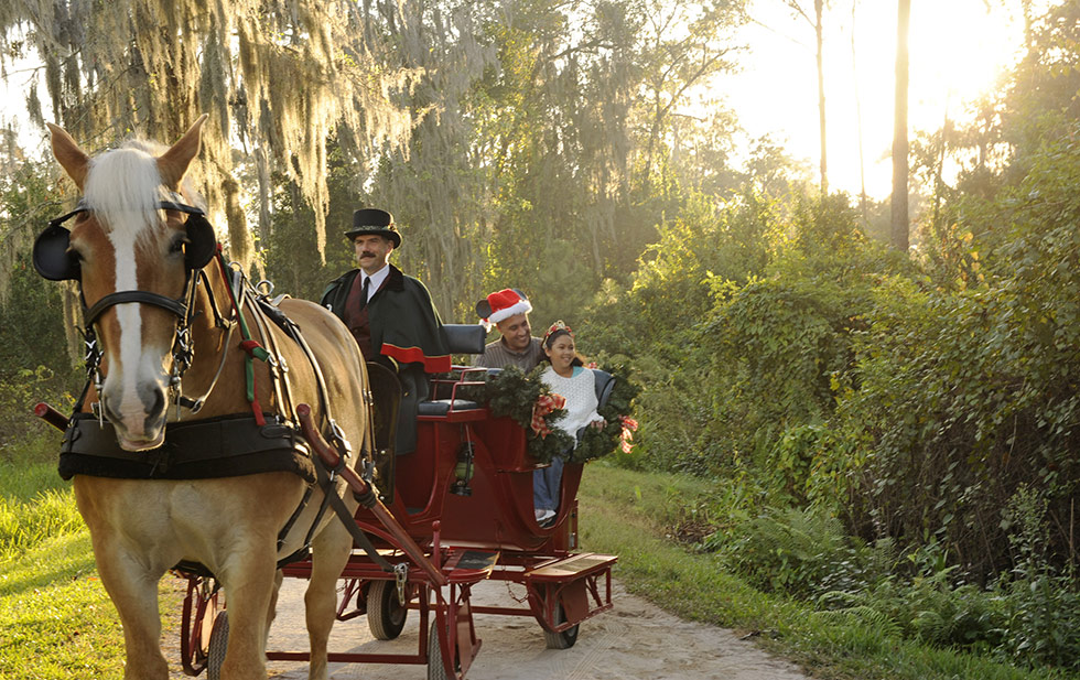 Fort Wilderness Resort - Disney World Orlando